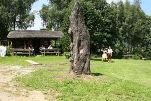 Gasthof zum Sonnenwald, Guest houses  Schöfweg - big - 65