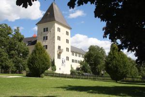 Ferienwohnung Domitian, Apartmanok  Millstatt - big - 26