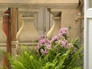 La Terrasse du Marché aux Fleurs, Apartments  Montpellier - big - 24