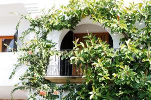 obrázek - Hotel Cala Dor