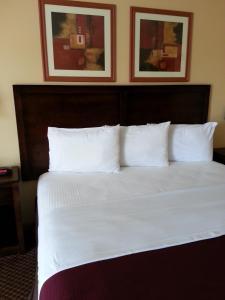 Americas Best Value Inn Bryant, Motely  Bryant - big - 4
