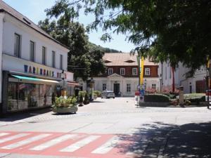 Haus Feuchtl, Pensionen  Purkersdorf - big - 36
