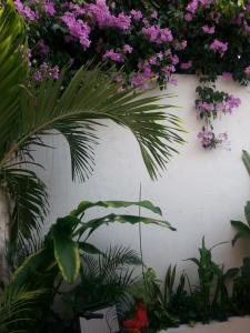 Price Casa La Sierpe by HMC