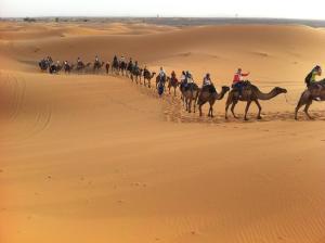 Marhaba Camp, Camel & Sandboarding, Zelt-Lodges  Merzouga - big - 44