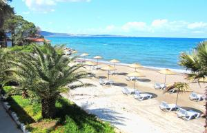 Altin Camp and Hotel - Special Category