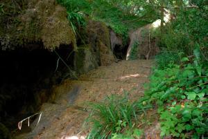 La Cascade de Hauterive, Panziók  Pinel-Hauterive - big - 21