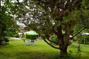 La Cascade de Hauterive, Bed and Breakfasts  Pinel-Hauterive - big - 29