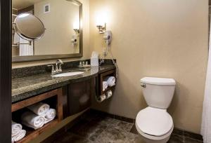 Holiday Inn Hotel & Suites Durango Central, Отели  Durango - big - 6