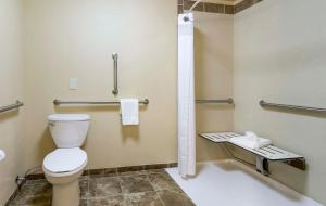 Holiday Inn Hotel & Suites Durango Central, Отели  Durango - big - 4