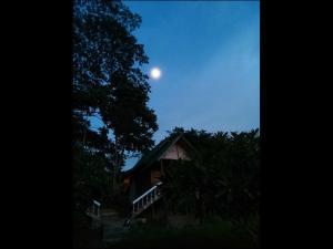 Swan Pakaran Guest House, Penzióny  Pai - big - 19