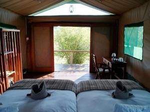 Tilodi Safari Lodge, Chaty  Kasane - big - 3