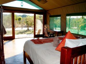 Tilodi Safari Lodge, Chaty  Kasane - big - 11