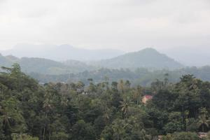 The OpenHill, Apartmány  Kandy - big - 17