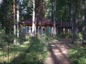 Гостиничный комплекс Деревня Александровка, Комплексы для отдыха с коттеджами/бунгало  Кончезеро - big - 40