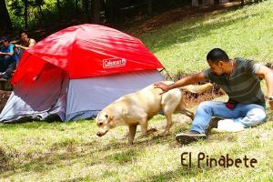 El Pinabete Finca & Cabañas, Hostince  La Granadilla - big - 23