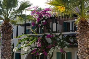 Rose Bay Hotel(Kamari)