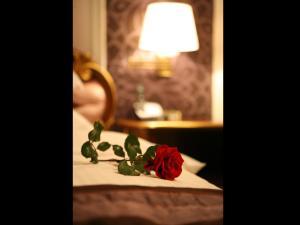 Hotel Villa Viktorija - фото 27