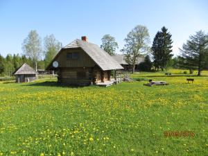 Viesu nams Jaunogrini