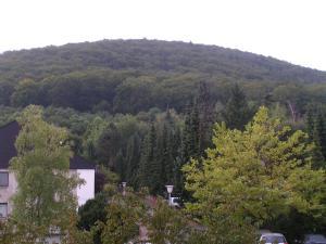 Ferienwohnung Foppe, Apartmanok  Bad Harzburg - big - 11