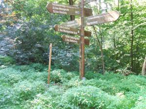 Ferienwohnung Foppe, Apartmanok  Bad Harzburg - big - 7