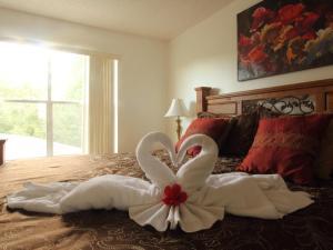 Jasmine Home by Florida Dream Homes, Case vacanze  Kissimmee - big - 11