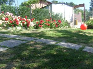 Farm stay Agriturismo la Borgaccia