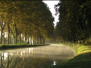 Gîte Au Jardin, Case vacanze  Meilhan-sur-Garonne - big - 10