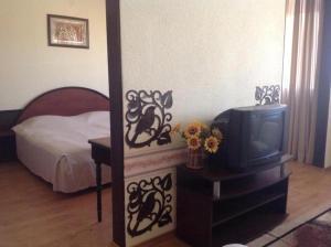 Botevgrad Hotel
