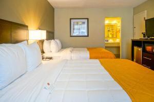 Quality Inn Phoenix Airport, Hotels  Phoenix - big - 2
