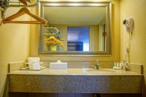 Quality Inn Phoenix Airport, Hotels  Phoenix - big - 4