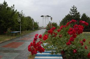 Санаторий Тополь - фото 6
