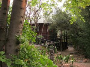 Elands River Lodge, Lodges  Machadodorp - big - 12