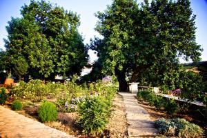Villa Nikolaos