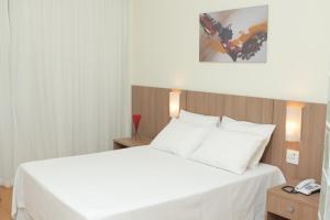 Premier Parc Hotel, Hotel  Juiz de Fora - big - 18