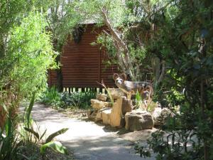 Elands River Lodge, Kunyhók  Machadodorp - big - 41