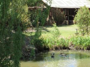Elands River Lodge, Kunyhók  Machadodorp - big - 18