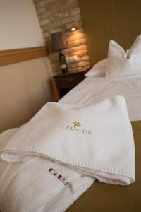 Crocus Gere Bor Hotel Resort & Wine Spa, Hotels  Villány - big - 16