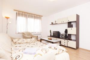 Apartment Ferdinand - фото 10