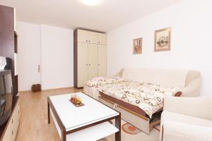Apartment Ferdinand - фото 7