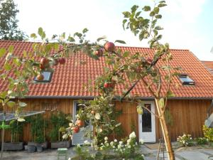 Bij en Boom Bed & Breakfast
