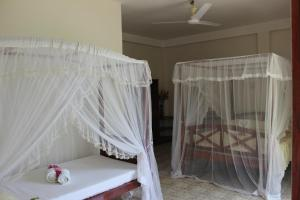 棕櫚林旅館 (Palm grove)