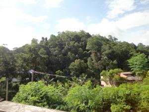 Sherenes Homestay, Privatzimmer  Kandy - big - 24