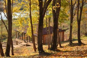 База отдыха Кудыкина Гора - фото 17