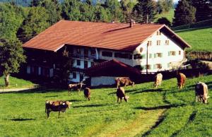Ferienhof Kösel - Apartment - Missen - Wilhams
