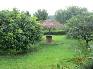 Orange Grove Resort, Rezorty  Pai - big - 2