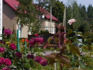 База отдыха Розовая Дача, Приозерск