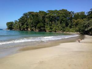 Pachamama Jungle River Lodge - Punta Uva photos