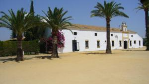 Hacienda La Indiana, Penzióny  Los Palacios y Villafranca - big - 18
