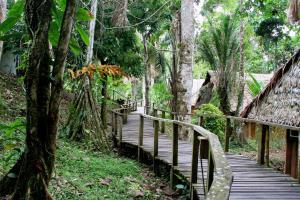 Ceiba Tops, Lodges  Santa Teresa - big - 31