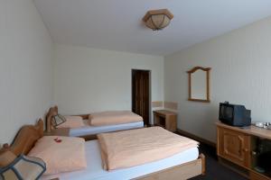 Gasthof Schulte, Hotely  Menden - big - 5